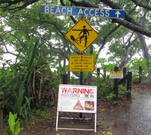 Beach Warnings